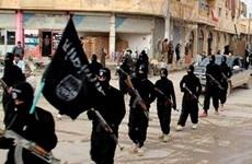 Syria: Một nhóm thánh chiến Hồi giáo bắt hàng trăm thành viên IS
