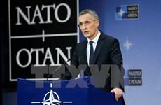 Nga và NATO còn một số bất đồng cơ bản về vấn đề Ukraine