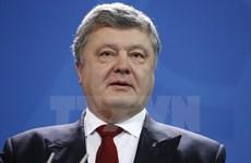 Tổng thống Ukraine đề nghị ngừng bắn ngay lập tức tại Donbass