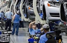 Mexico xuất khẩu hơn 1,7 triệu xe ôtô trong 7 tháng đầu năm