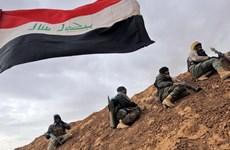 Iraq chuẩn bị giải phóng thành trì quan trọng của tổ chức IS