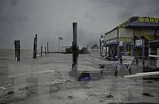Siêu bão Irma tiến vào đất liền bang Florida, hàng vạn hộ dân mất điện