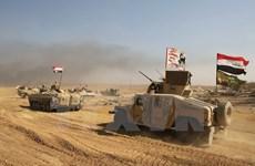 Iraq mở chiến dịch tấn công tổ chức khủng bố IS gần biên giới Syria