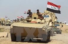 Quân đội Iraq tuyên bố giải phóng thị trấn Hawija từ tay IS