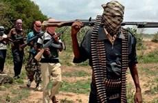 Hàng vạn trẻ em mất cha mẹ do các cuộc tấn công của Boko Haram