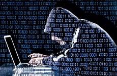 Truyền thông Mỹ: Các tin tặc Nga đánh cắp dữ liệu của NSA