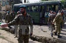 Lực lượng an ninh Afghanistan tiến hành chiến dịch tấn công Taliban