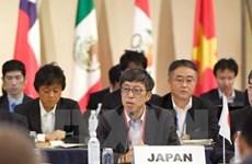 Nhật Bản nỗ lực tối đa để đạt được thỏa thuận chung về TPP