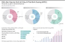 [Infographics] Diễn đàn Hợp tác kinh tế châu Á-Thái Bình Dương