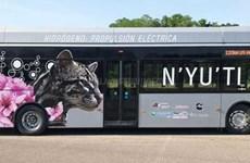 Costa Rica lưu hành xe buýt đầu tiên sử dụng nhiên liệu hydro