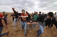 """Palestine chỉ trích Mỹ làm """"trật bánh"""" tiến trình hòa bình Trung Đông"""