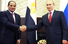 Hợp tác quân sự giữa Ai Cập và Nga đang ngày càng phát triển