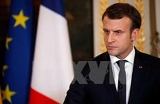 Tổng thống Pháp dự đoán thời điểm tổ chức IS bị đánh bại ở Syria