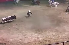 [Video] Con bò tót nổi điên tấn công, húc tung đấu sỹ và ngựa