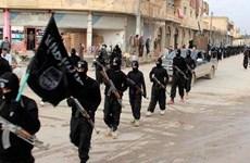 Syria: Tàn quân IS chạy sang các khu vực do chính quyền kiểm soát