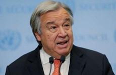 Tổng Thư ký Liên hợp quốc hối thúc cộng đồng quốc tế đoàn kết