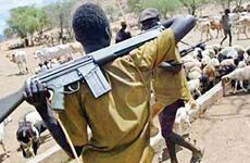 Xung đột ở miền Trung Bắc Nigeria, hơn 50 người thương vong