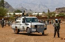 Sudan gia hạn lệnh ngừng bắn đơn phương với các phần tử nổi dậy