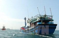 Nghệ An: Tàu cá chở 10 thuyền viên bất ngờ bị gãy chân vịt, hỏng máy