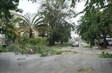 Lở bùn tại Mỹ và bão tại Madagascar gây thiệt hại nặng nề
