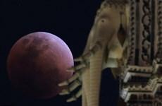 [Photo] Hiện tượng kỳ thú 'siêu trăng máu xanh' trên khắp thế giới
