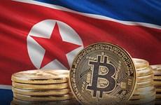 Hàn Quốc nghi tin tặc Triều Tiên đứng sau vụ trộm tiền điện tử