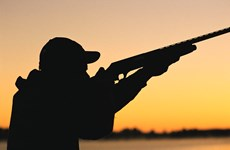 Thợ săn bỏ mạng thương tâm vì bị tưởng nhầm là con nai