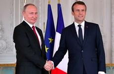 Lãnh đạo Pháp, Nga điện đàm về việc thực thi lệnh ngừng bắn ở Syria