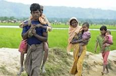 'Thoả thuận hồi hương người Rohingya về Myanmar khó thành công'