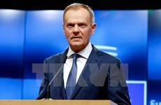 EU thông qua đường lối chung cho đàm phán quan hệ thương mại với Anh