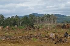 """Những hình ảnh """"nóng"""" về đất đai, môi trường năm 2013"""