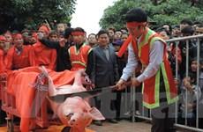 Tổ chức Động vật Châu Á kêu gọi chấm dứt lễ hội chém lợn tại Bắc Ninh