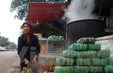 Làng bánh chưng Bờ Đậu: Nơi lưu giữ tinh hoa ẩm thực Việt