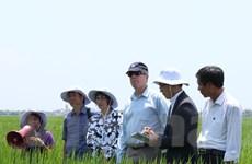 Hoa Kỳ-Việt Nam hợp tác thúc đẩy sáng kiến về biến đổi khí hậu
