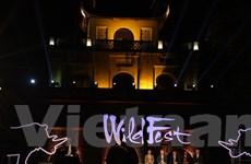 Hàng nghìn bạn trẻ tham dự lễ hội chiếu phim và ca nhạc WildFest