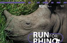 """Phát động giải chạy Sông Hồng để """"cứu"""" tê giác khỏi bị tuyệt chủng"""