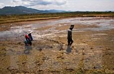 Việt Nam đặt mục tiêu giảm 10% lượng khí CO2 vào năm 2020