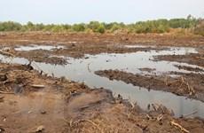"""Bài 4: """"Muốn giữ vựa lúa miền Tây, phải khôi phục 2 túi nước tự nhiên"""""""