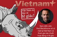 Sao Hollywood tới Việt Nam tuyên truyền bảo vệ tê giác