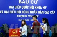 Hơn 1.830 sinh viên Đại học Khoa học Xã hội và Nhân văn đi bầu cử