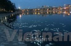 """Bài 4: Chủ tịch CLB Hồ Hà Nội: """"Nếu không có hồ, Thủ đô sẽ ra sao?"""""""