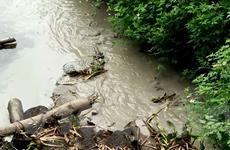 """Xâm nhập thủ phủ nhựa tái chế """"bức tử"""" môi trường ngay thủ đô Hà Nội"""
