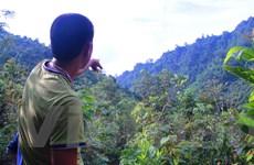 """Thủy điện """"mọc"""" giữa Khu bảo tồn: Có nên đánh đổi rừng lấy """"bom nước""""?"""