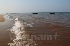 Công bố kết quả kiểm tra các vệt nước biển màu đỏ ở miền Trung