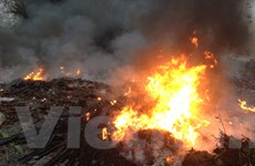 [Photo] Những vụ đốt rác công nghiệp lửa bốc rừng rực tại Bắc Ninh