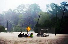 Lancet: Thêm gần 1 tỷ người có thể bị ảnh hưởng bởi sóng nhiệt mỗi năm