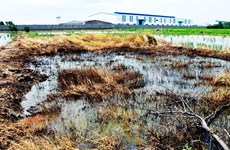 28 doanh nghiệp bị đưa vào diện kiểm soát môi trường đặc biệt