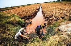 Thách thức an ninh nguồn nước và năng lượng ở Đồng bằng sông Cửu Long