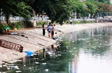 Chất lượng nước mặt đang suy thoái tới mức nguy hiểm với con người