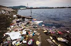 Xử lý ô nhiễm chất thải nhựa: Nên loại bỏ hay để 'biển đầy nhựa'?